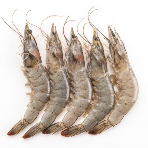 Fresh prawns or shrimps ready for online seafood delivery