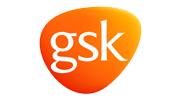 gsk-icon